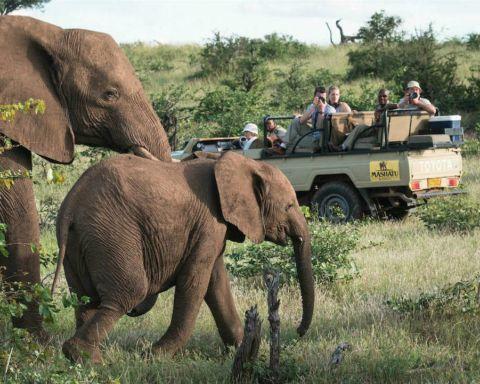 Zuid-Afrika-Mashatu-Game-Drive