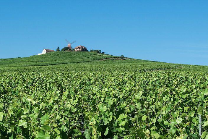Roadtrip-Champagne-streek